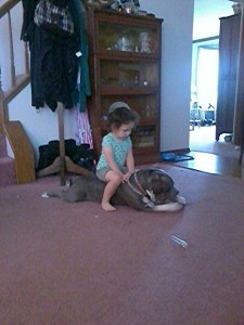 My granddaughter Shyla and Marley are fast friends.